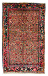 Bidjar carpet EXV98