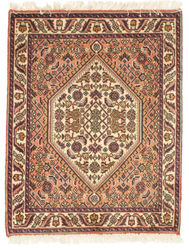 Bidjar carpet EXZO145