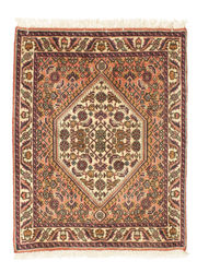 Bidjar carpet EXZO144