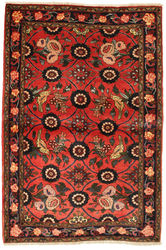 Bidjar carpet EXZO152