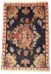 Sarouk carpet EXZO620
