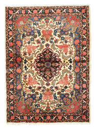 Bidjar carpet VEXZL1502