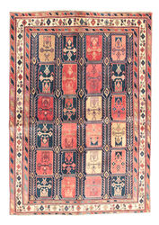 Afshar carpet EXZR27