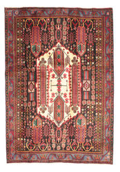 Afshar carpet EXZR46