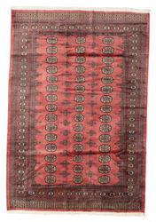 Pakistan Bokhara 2ply carpet RZZAE190