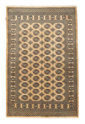 Pakistan Bokhara 2ply carpet NAS698