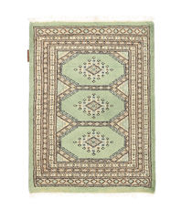 Pakistan Bokhara 2ply carpet NAS494