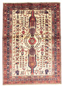 Afshar carpet EXZR21