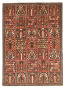 Bakhtiari Patina carpet EXZV25